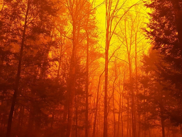 2 juveniles charged in East Tennessee wildfires