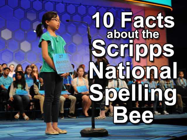 Scripps National Spelling Bee kicks off in DC